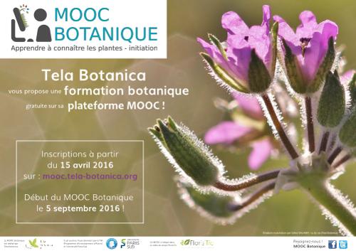 présentation du mooc botanique